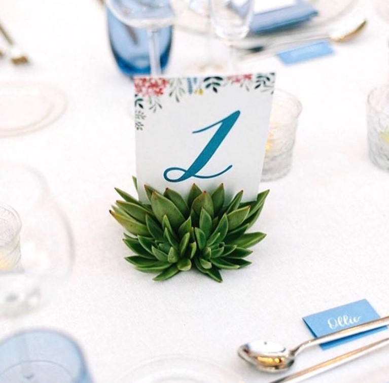 DIY Backyard Wedding Decorations On a Budget succulents plant Place Card Holder
